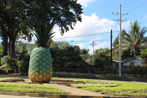 The iconic pineapple at the entrance of Camp Phillips.