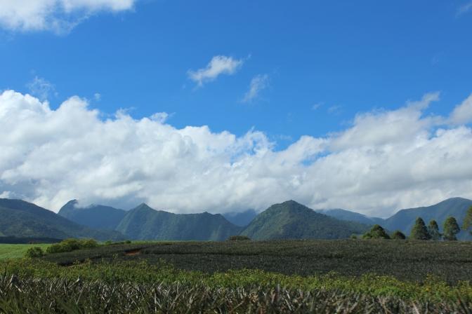 Bukidnon and Misamis Oriental